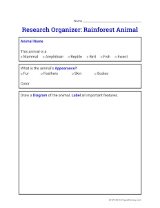 organizerrainforestanimalresearch
